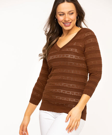 Pointelle V-Neck Sweater, Chocolate Brown, hi-res