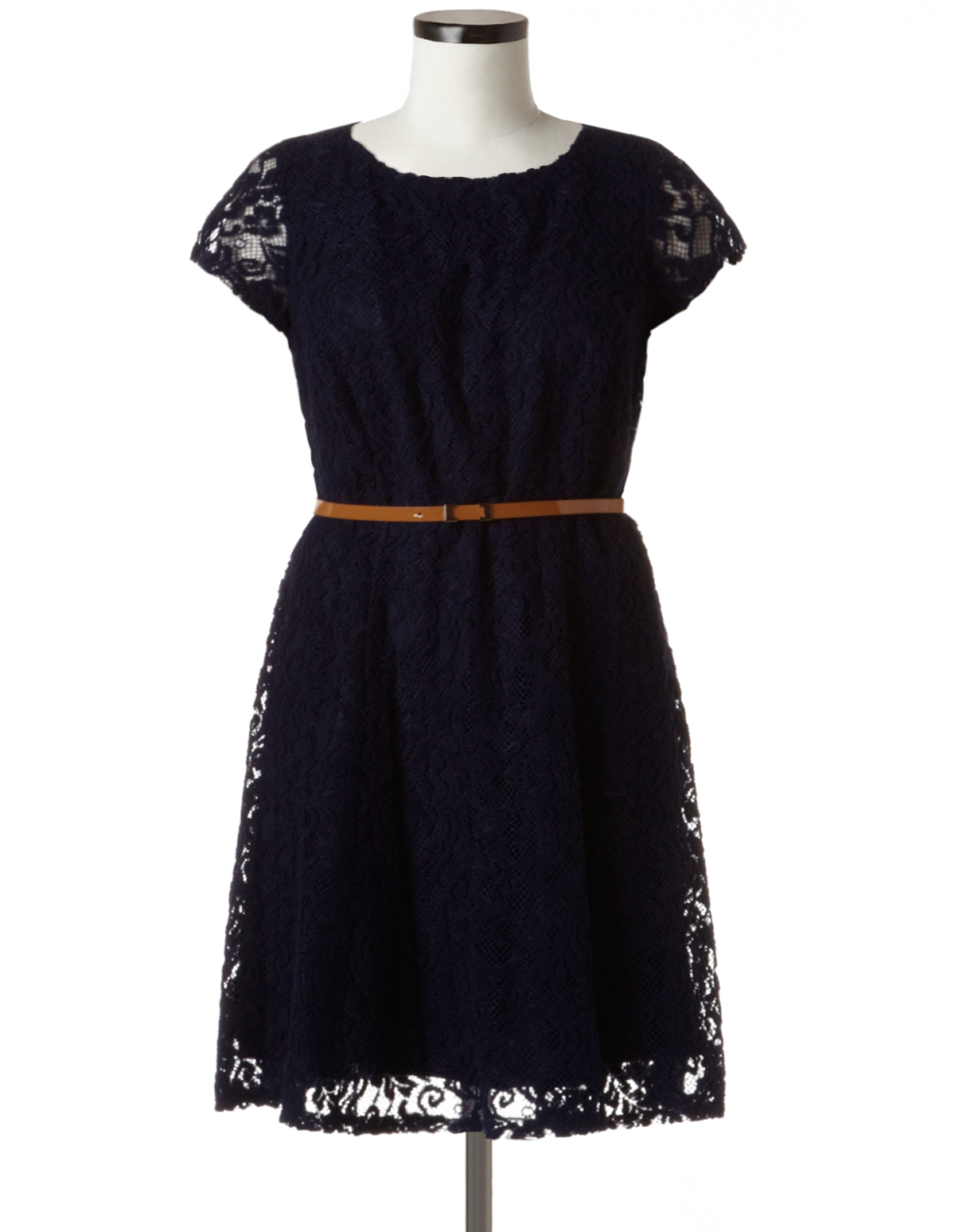 7c73c25f1e9 Plus Size Lace Fit and Flare Dress